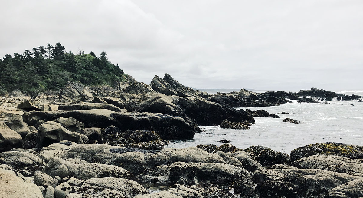 photo of cape arago state park